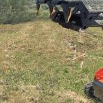 Lavorazione del terreno: le soluzioni Cormidi in agricoltura